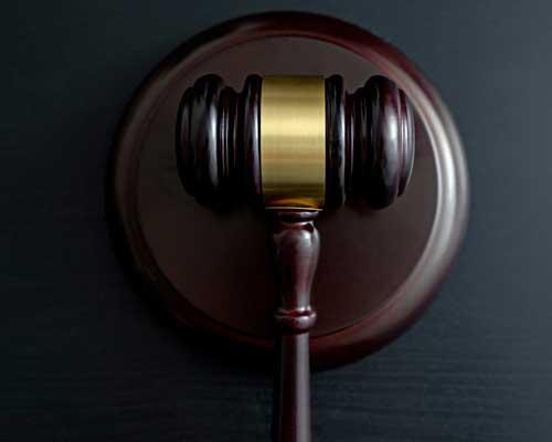 litigation-michele-diglio-lawyer-2