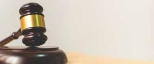 litigation-michele-diglio-lawyer
